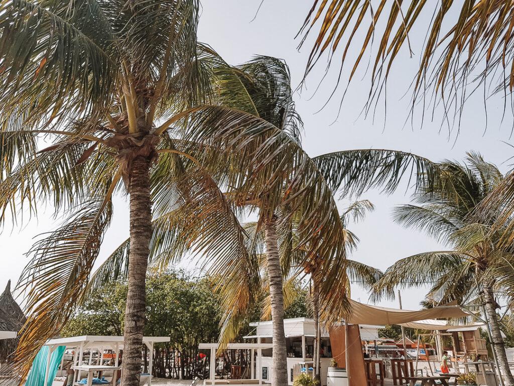 Jan Thiel Beach, de mooiste stranden van Curaçao YourTravelReporter.nl